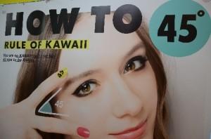 Japanisches Schönheitsideal