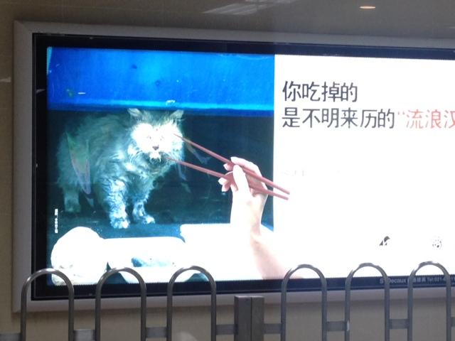 Esst keine Hunde
