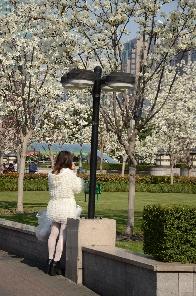 Frühling in SH