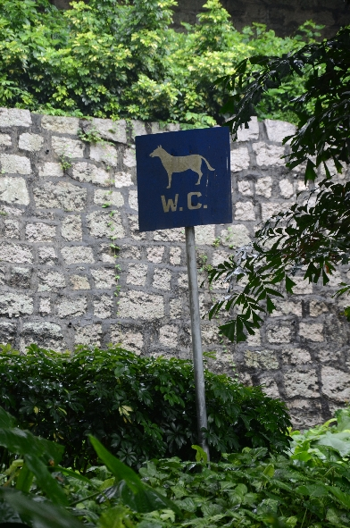 Hunde WC