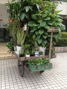 Mobiler Blumenverkauf