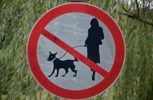 Hundefrauenverbot