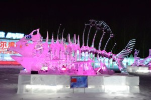 Ice Festival bn 03
