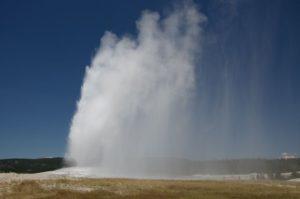 56 Yellowstone 5