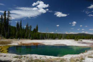 56 Yellowstone 9